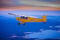 Top Cub Super Cub Airplane