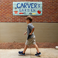 Thomas Wells   Buy at PHOTOS.DJOURNAL.COM<br /> Matthew Ring, 6, makes his way to the Carver Elementary School garden Tuesday to learn how a garden works.