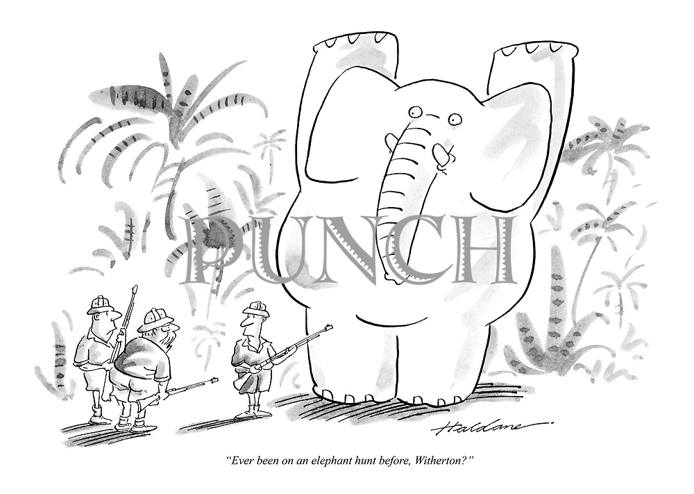 """""""Ever been on an elephant hunt before, Witherton?"""""""