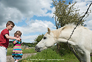Bolsover, Derbyshire - Feb 01: Two children feed grasses to a white horse in a field on 01 Feb 2014 in the outskirts of Bolsover, UK