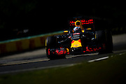 July 21-24, 2016 - Hungarian GP, Daniel Ricciardo (AUS), Red Bull