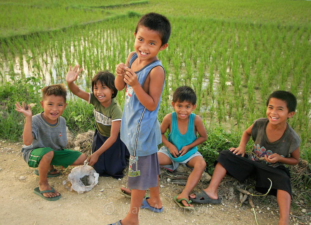 Children in a rice paddy, Bohol, Philippines