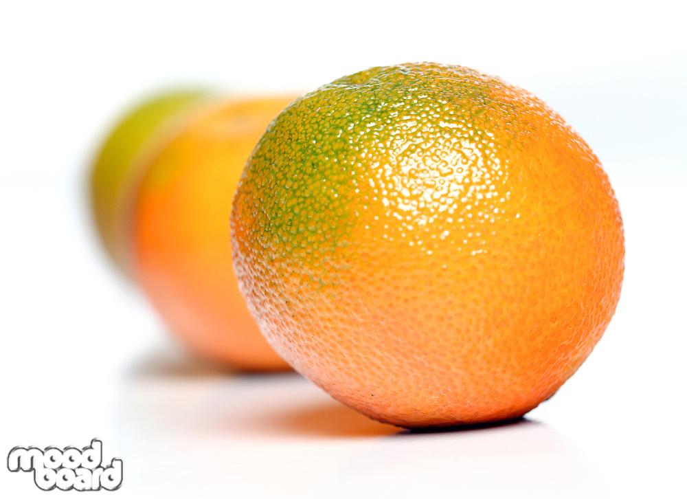 Studio sohot on mandarins on white backround