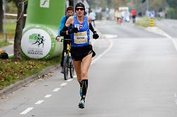 Robert Kotnik compete during 21km and 42km run at 19th Ljubljana Marathon 2014 on October 26, 2014 in Ljubljana, Slovenia. Photo by Vid Ponikvar / Sportida.com