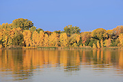 This photo was taken on the Fox River in De Pere, Wisconsin. At peak color, each autumn, the western Fox River shoreline is ablaze with hues of red, orange, yellow, and green. If you're willing to get out onto the water before first light, the rising sun in the east creates one of nature's true color spectacles.