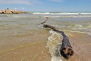 Dunes and beach. Albufera Natural Preserve, Valencia´s coastline