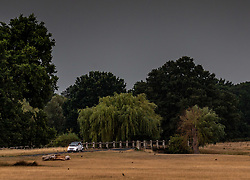 © Licensed to London News Pictures. 13/08/2020. London, UK. A car drives through rain and dark clouds in Richmond Park in South West London as heavy rain hits London this afternoon after several days of dry hot weather which saw temperatures in excess of 35c ... The Met Office have issuing a yellow weather warning for thunderstorms and heavy rain for the London area with risk of flooding and possible travel disruption. Photo credit: Alex Lentati/LNP