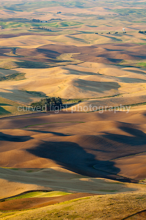 View of the Palouse agricultural landscape from Steptoe Butte Washington USA