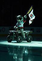 KELOWNA, BC - OCTOBER 2:  Rocky Raccoon, the mascot of the Kelowna Rockets enters the ice on his Polaris Sportsman quad against the Tri-City Americans at Prospera Place on October 2, 2019 in Kelowna, Canada. (Photo by Marissa Baecker/Shoot the Breeze)