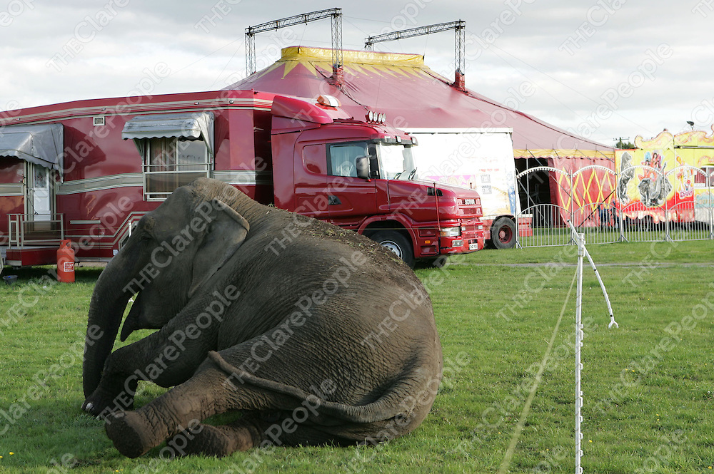 07/09/06<br />The Royal Russian Circus which reopened in Ennis last night for the first time since the tragic accident in Scariff last week.<br />Picture: Don Moloney / Press 22