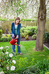 Feeding a lawn using fertiliser from a watering can.