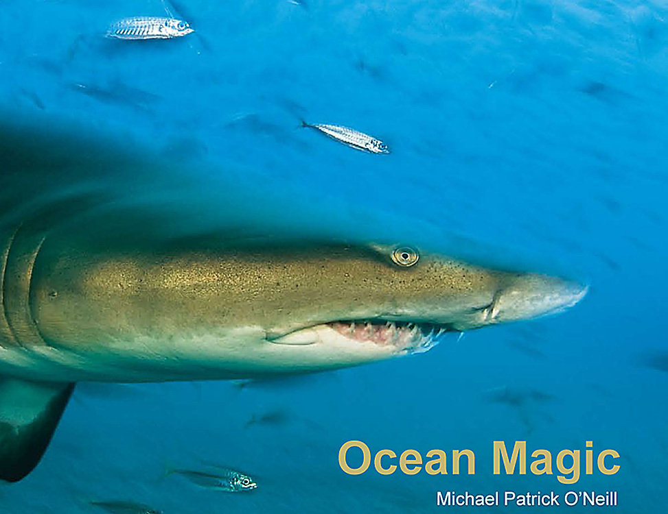 Absolute enchantment, Ocean Magic illustrates the diversity and complexity of the <br />