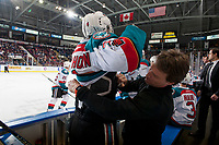 KELOWNA, CANADA - FEBRUARY 24:  Gordie Ballhorn #4 of the Kelowna Rockets is tended to by athletic therapist Scott Hoyer on the bench against the Kamloops Blazers on February 24, 2018 at Prospera Place in Kelowna, British Columbia, Canada.  (Photo by Marissa Baecker/Shoot the Breeze)  *** Local Caption ***