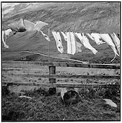 Wäsche im Wind, clothes drying in the wind, linges sur corde à linge dans le vent