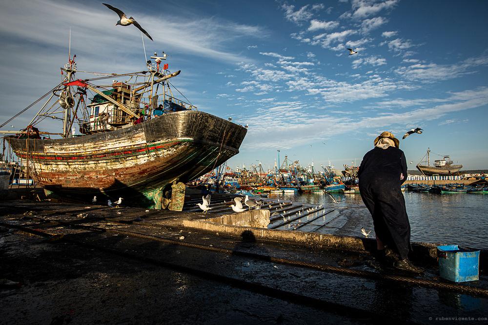 Essaouira harbour. Morocco