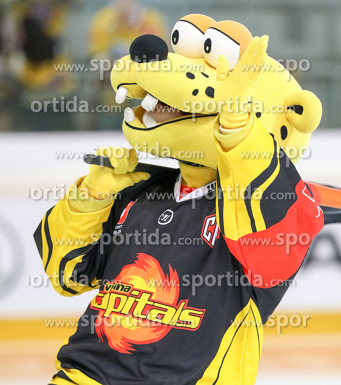 18.08.2016, Albert Schultz Halle, Wien, AUT, CHL, UPC Vienna Capitals vs Skelleftea AIK, Gruppenspiel, im Bild Capitano Maskottchen der UPC Vienna Capitals // during the Champions Hockey League match between UPC Vienna Capitals and Skelleftea AIK at the Albert Schultz Arena, Vienna, Austria on 2015/08/18. EXPA Pictures © 2016, PhotoCredit: EXPA/ Alexander Forst