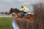 PEPPAY LE PUGH (5) ridden by Harry Skelton and trained by Dan Skelton winning The Barr Environmental Novices Limited Handicap Steeple Chase over 2m (£16,800)  during the Scottish Grand National, Ladies day at Ayr Racecourse, Ayr, Scotland on 12 April 2019.