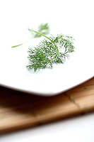 Close up of fresh dill