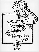 Air thermoscope: Sanctorius' (1651-1636) clinical 'thermometer' (1612). One which was globe shaped was place in patient's mouth and the other in a bow of water. The serpentine 'thermometer' was graduated with glass beads.  Woodcut