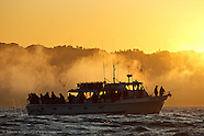 SF Bay - Sport Fishing