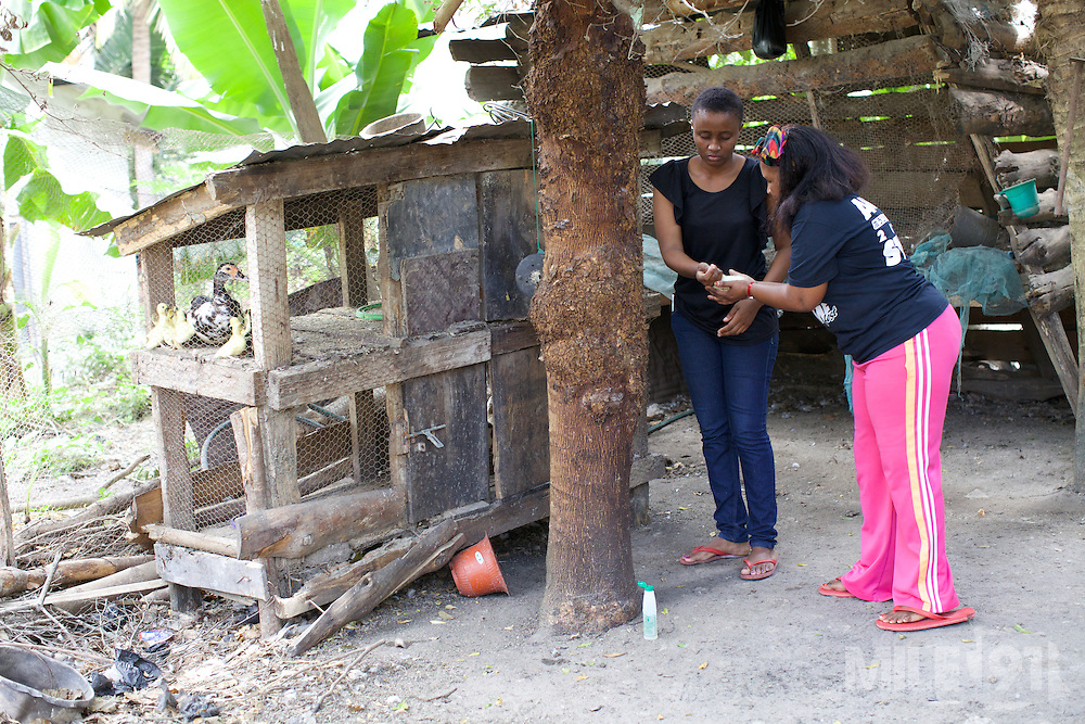Haika Mshomi and her daughter checking the new ducklings.<br /> <br /> Haika set up and now runs a poultry business selling chickens, their eggs and also ducks, Mail Mojo Soweto, Tanzania.<br /> <br /> She attended MKUBWA enterprise training run by the Tanzania Gatsby Trust in partnership with The Cherie Blair Foundation for Women.