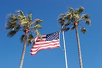 U.S. Flag and Palm Trees, Newport Beach, California
