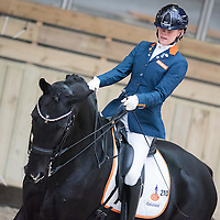 Grade II - Individual Competition - FEI European Para Dressage Championships 2015 - Deauville