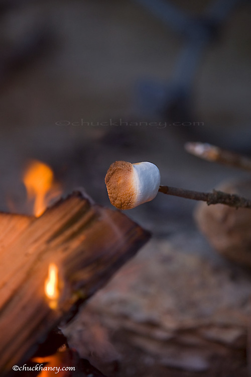 Marshmallow roasting in campfire near Whitefish Montana