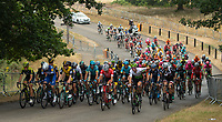 The peloton cycles through Richmond Park in The Prudential RideLondon Classic. Sunday 29th July 2018<br /> <br /> Photo: Jon Buckle for Prudential RideLondon<br /> <br /> Prudential RideLondon is the world's greatest festival of cycling, involving 100,000+ cyclists - from Olympic champions to a free family fun ride - riding in events over closed roads in London and Surrey over the weekend of 28th and 29th July 2018<br /> <br /> See www.PrudentialRideLondon.co.uk for more.<br /> <br /> For further information: media@londonmarathonevents.co.uk