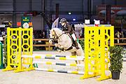Demi Ros - Simba<br /> Indoor Brabant 2017<br /> © DigiShots