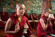 Tara morning puja - Karma Drubdey nunnery, Bhutan, 2016
