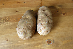18 February 2016:   Studio - Potato #018.  A pair of baking potatoes rests uncooked on a wooden table top