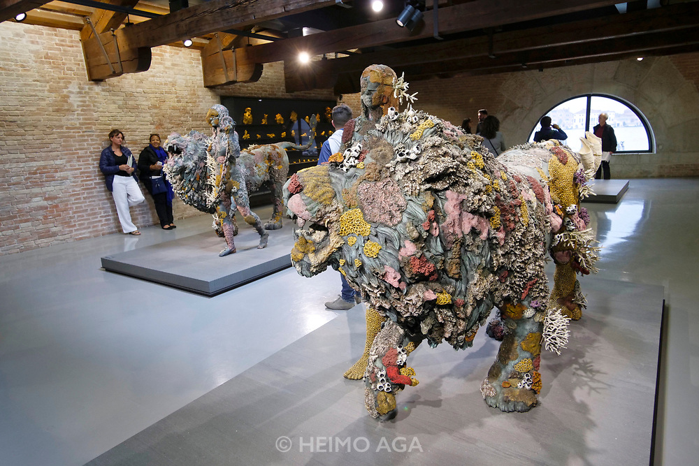 Punta della Dogana.<br /> Damien Hirst: Treasures from the Wreck of the Unbelievable.<br /> Lion Women of Asit Mayor.