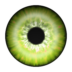 green yellow eye iris eye iris eye iris