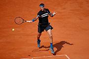 JUAN MARTIN DEL POTRO (ARG) during the Roland Garros French Tennis Open 2018, day 13, on June 8, 2018, at the Roland Garros Stadium in Paris, France - Photo Stephane Allaman / ProSportsImages / DPPI