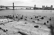 Manhattan Bridge over the East River