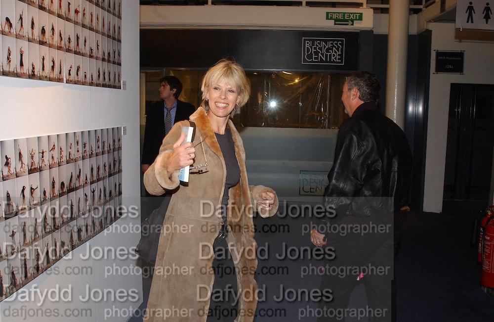 Nick and Netie Mason, Art 2003 London Art Fair opening. Business Design Centre.  14 January 2003. © Copyright Photograph by Dafydd Jones 66 Stockwell Park Rd. London SW9 0DA Tel 020 7733 0108 www.dafjones.com