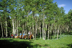 Telluride, Colorado:  Local cowboy Roudy Roudebush leads a trail ride through an aspen-touched valley above town.