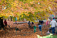 Children collecting and racking leaves in park. Austria, Klagenfurt.