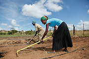 Community members working in the garden planting vegetables. Nombhela Gardens. The Nombhela gardens project has been receiving free legal advice from the Legal Resource Centre. Venda. South Africa.