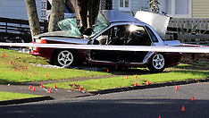 Auckland-One critical after car v tree, Mangere East