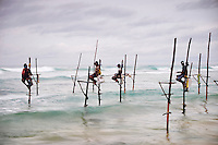 Sri Lanka, province du sud, plage de Weligama, pêcheurs sur échasses au crépuscule // Sri Lanka, Southern Province, South Coast beach, Weligama beach, Stilt fishermen on the coast at dusk