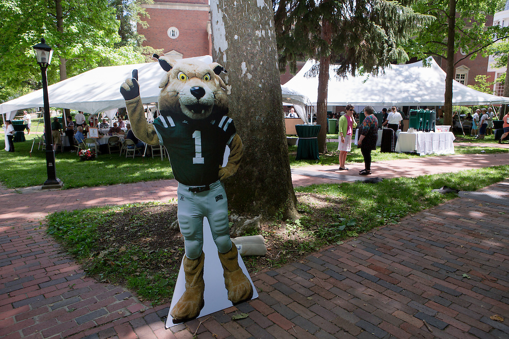 "A cardboard cutout of Rufus, the Ohio University mascot, greets Ohio University alumni and their families as they arrive for a barbecue on the College Green on May 31, 2014. The event was part of the ""On The Green"" weekend, hosted by the Ohio University Alumni Association. Photo by Lauren Pond"