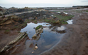 Rocky wave cut platform exposed at low tide, Watchet, Somerset, England