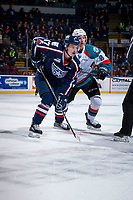 KELOWNA, CANADA - JANUARY 3: Carson Focht #17 of the Tri-City Americans faces off against Jack Cowell #8 of the Kelowna Rockets on January 3, 2017 at Prospera Place in Kelowna, British Columbia, Canada.  (Photo by Marissa Baecker/Shoot the Breeze)  *** Local Caption ***