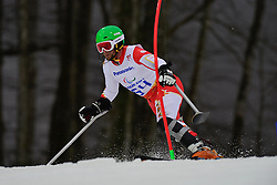 Matt HALLAT competing in the Alpine Skiing Super Combined Slalom at the 2014 Sochi Winter Paralympic Games, Russia