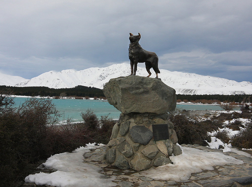 Statue of McKenzies Dog, Tekapo, New Zealand, Thursday, August 12, 2010. Credit:SNPA/Pam Johnson