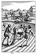 Ploughing with oxen, sowing seed broadcast and harrowing.   In background agricultural tools are being made from wood. From 18th century edition of Virgil 'Georgics' which followed the agricultural traditions set down in Roman times by Virgil. Copperplate engraving.