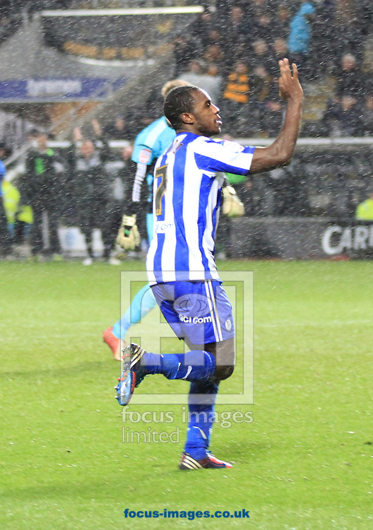 Picture by Richard Gould/Focus Images Ltd +447814 482222.12/01/2013.Michail Antonio of Sheffield Wednesday celebrates his teams 3rd goal during the npower Championship match at the KC Stadium, Kingston upon Hull.