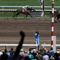 "(PPAGE1) Monmouth Park 5/13/2006 A fan raises his hands in celebration (left) as legendary jockey Joe Bravo (#3 horse to right) wins a photo finish race aboard 'SEVENTEEN ABOVE""  during the 3 race of the day.  Michael J. Treola Staff Photographer.....MJT"